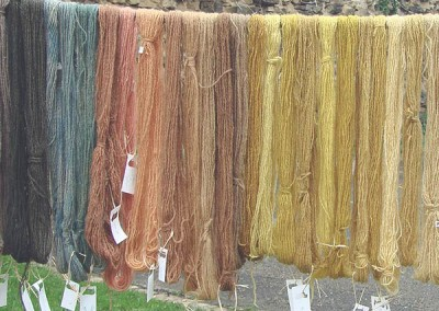 Herbal Dyeing experience
